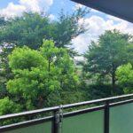 緑豊かな眺望です!